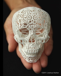 Skull Sculpture Crania Anatomica Filigre Small By Shhark On Etsy