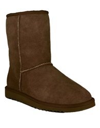 Ugg Ladies Classic Short Sheepskin Lined Boots Chocolate