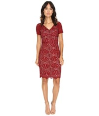 Nue By Shani Geometric Lace Dress Wine Women's Dress Burgundy