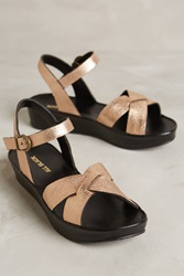 All Black Solid Cross Flatforms Bronze