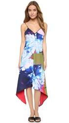 Clover Canyon Urban Blooms Dress Multi