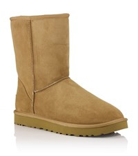Ugg Australia Men's Classic Short Boot Male