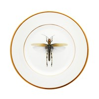 Melody Rose Dragonfly Side Plate