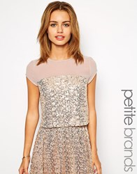Little Mistress Petite Sequin Top With Mesh Inserts Gold