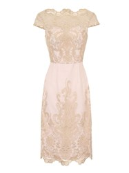 Chi Chi London Embroidered Cap Sleeve Bodycon Dress Pink