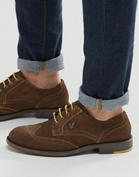 Lyle And Scott Yarrow Brogues In Suede Brown