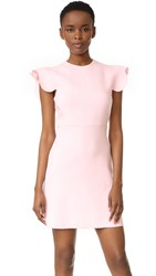 Giambattista Valli Sleeveless Dress Pink