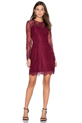 Greylin Shirley Lace Dress Burgundy