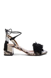 Aquazzura Snakeskin Wild Thing Sandals In Animal Print