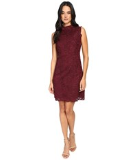 Ted Baker Latoya High Neck Lace Mini Dress Oxblood Women's Dress Red