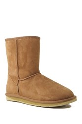 Australia Luxe Collective Cosy Short Genuine Sheepskin And Shearling Lining Boot Brown