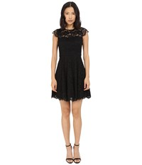 Kate Spade Rose Lace Fit And Flare Dress Black Women's Dress