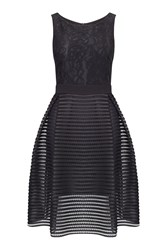 James Lakeland Front Lace Fit And Flare Dress Black