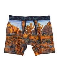 Penguin Desert Print Boxer Briefs Desert Photo