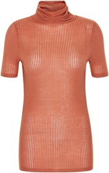 Soaked In Luxury Short Sleeved Top With Roll Neck Red
