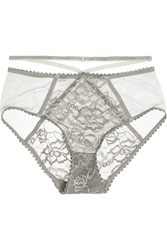 Lonely Winona Lace Tulle And Velvet Briefs
