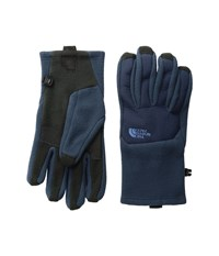 The North Face Men's Denali Etip Glove Urban Navy Urban Navy Extreme Cold Weather Gloves