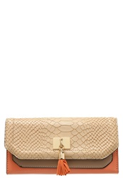 New Look Tanya Wallet Mink Mint