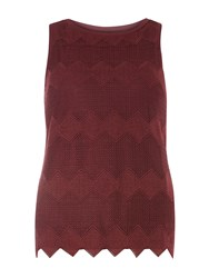 Dorothy Perkins Chevron Lace Dress Red