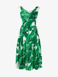 Dolce And Gabbana Sleeveless Banana Leaf Print Cotton Dress White Green