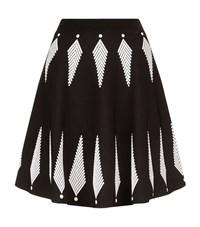 Alexander Mcqueen Graphic Feather Jacquard Skirt Female Black