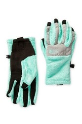 The North Face Denali Thermal Etip Gloves Green