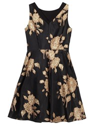 Precis Petite Quinn Jacquard Prom Dress Black