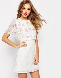 Asos Salon 3D Floral Lace Embroidered Crop Top Mini Dress White