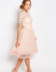 Chi Chi London Premium Lace Dress With Cutwork Detail And Cap Sleeve Nude Pink