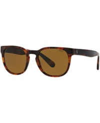 Polo Ralph Lauren Sunglasses Polo Ralph Lauren Ph4099 52 Tortoise Gold Green