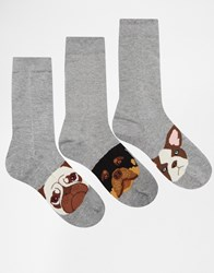 Asos Socks 3 Pack With Dog Faces Design Grey