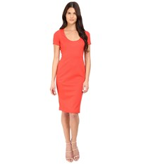 Zac Posen Short Sleeve Fitted Sheath Dress Coral