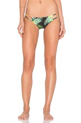 Stone Fox Swim Laguna Bikini Bottom Green