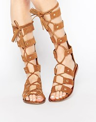 Park Lane Gladiator Suede Knee High Flat Sandals Tan Suede