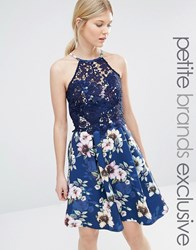 Paper Dolls Petite Halter Neck Prom Dress With Floral Skirt And Lace Overlay Bodice Multi Navy