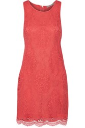 Tart Collections Williow Lace Mini Dress Coral