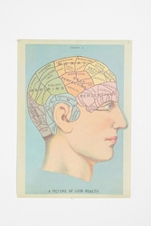 Phrenology Head Poster Urban Outfitters