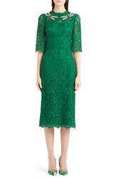 Women's Dolce And Gabbana Dragonfly Embellished Elbow Sleeve Lace Dress