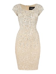 Js Collections Ombre Beaded Dress With Cap Sleeves Champagne