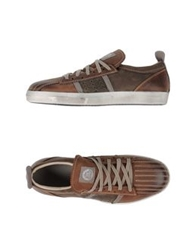 Primabase Low Tops And Trainers Cocoa