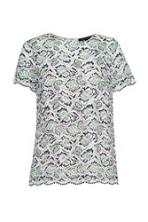 French Connection Boccara Boxy Lace T Shirt Green