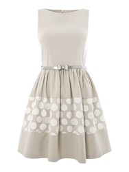 Almari Big Spot Lace Bow Belt Dress Grey