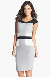 Women's French Connection Colorblock Ponte Knit Sheath Dress