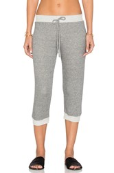 Nightcap Cropped Terry Sweatpants Gray