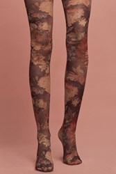 Hansel From Basel Rose Garden Tights Brown