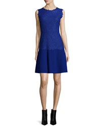 Elie Tahari Adira Sleeveless Lace Top Dress Radiance