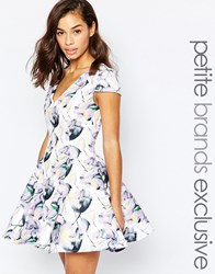 True Decadence Petite Fit And Flare Printed Prom Lilac