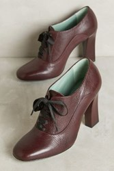 Anthropologie Paola D'arcano Lace Up Heeled Oxfords Wine