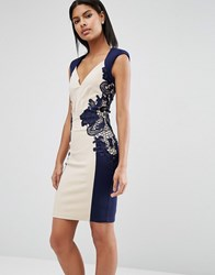 Little Mistress Lace Detail Bodycon Dress Cream And Navy