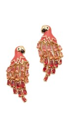 Kate Spade Out Of Office Parrot Earrings Pink Multi